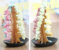 Wholesale 60pcs Magic Growing Paper Christmas trees Colorful magical Christmas tree paper tree