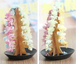 Wholesale Magic Paper Tree - 60pcs lot Magic Growing Paper Christmas trees Colorful magical Christmas tree paper tree