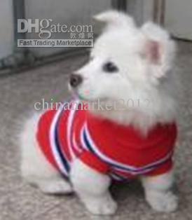 Frete grátis roupas para animais de estimação do cão casaco camisola listra cruz em torno do pescoço gola alta XS S M L XL m