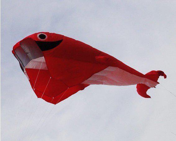 2.1 M 3D ضخمة طائرة ورقية Parafoil الحوت / الأحمر شحن مجاني!