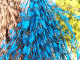 Wholesale Rooster Feather Extension Real - Grizzly Real Feather Hair Extension (Good as Rooster Extensions) 100 Feathers + 100 beads FET103