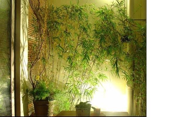 小売ハイパワー3Wホワイト/暖かい白い庭LEDの洪水スポットライト110-240V天井LEDダウンランプの風景壁ヤードパスポンドLED LAWNランプ