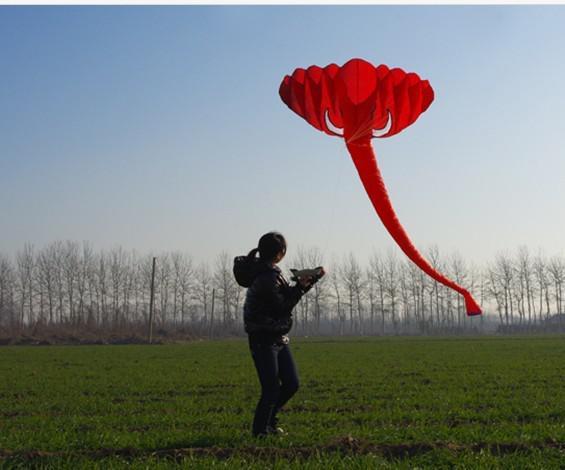 Gratis frakt! Gratis frakt !! 3,8 m singel linje stunt Elephant Power Sport Kite