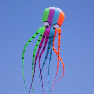 3D26ft 8m أحادية الخط حيلة الألوان Parafoil الأخطبوط POWER Sport Kite لعبة في الهواء الطلق