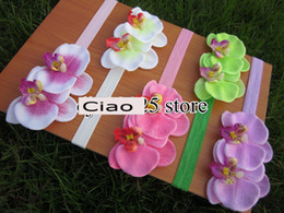 Wholesale Double Flower Baby Headbands - Double Moth Orchids flowers with baby Elastic Headbands baby hair accessories top baby headband