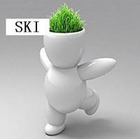Wholesale Mini Bonsai Grass Man - wholesale retail Creative Gift Plant big white Hair man Plant Bonsai Grass Doll Office Mini Fantasti