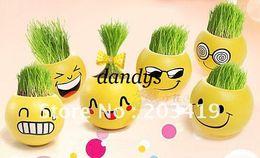 Wholesale Man Grass Plant - wholesale retail Gift face expression Hair man Plant Bonsai Grass Doll Office Mini Plant Fantastic H
