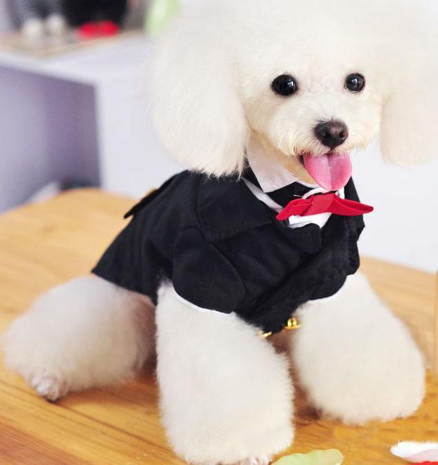 Pet Wedding Dress /dog Tuxedo Suit 5 Size Pet Dress Online with ...