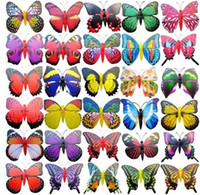 Wholesale Wholesale Butterfly Magnets - Wholesale 1000pcs lot Simulation butterfly fridge magnet , fridge magnets , decoration magnets Toys
