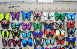 Wholesale Toy Drop Shipping - 500pcs lot 3D Simulation Butterfly Fridge Magnets Refrigerator Magnet Sticker Decoration Toy 4cm Free & Drop Shipping