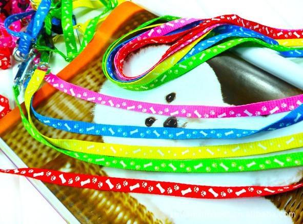 Gratis frakt Pet Harness Rope Dog Leash Lead Collar Puppyharness Rope