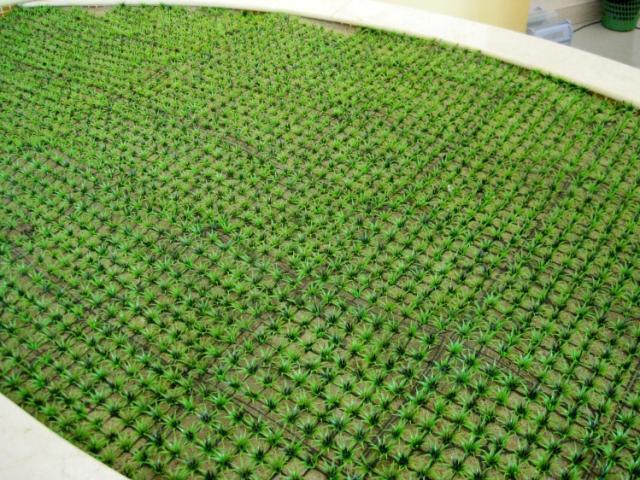 Simulação Grama Artificial Plástico Grama Mat Retângulo Grama Mat Casa Decoração de Casamento