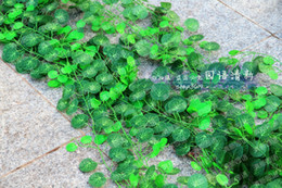 Plastic Green Vines Canada - 2.5M long Simulation Ivy Rattan Climbing Vines Green Leaf Artificial silk begonia Wall Decoration Home Decor free shipping