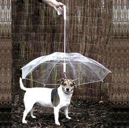2013 moda Mascota paraguas perro mascota impermeable perro perro impermeable zhuaizhu perro cuerda collar de perro