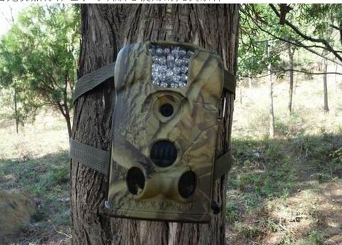 Hunting Trail Camera Scouting Game Cameras 5.0 Megapixel Digital ...