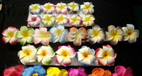 Wholesale Hawaiian Foam Flowers Wholesale - Free Shipping!! 120pcs 3 inch Hawaiian Plumeria Foam Flower Hair Clips(6 colors mixed)
