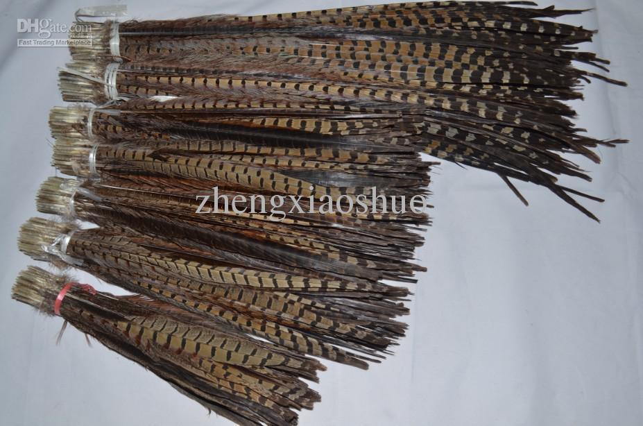 Gratis verzending 100 stks / partij Ringneck Fazant Staartveren Fazant Feather Costume Feather Festive Event Supply Decor