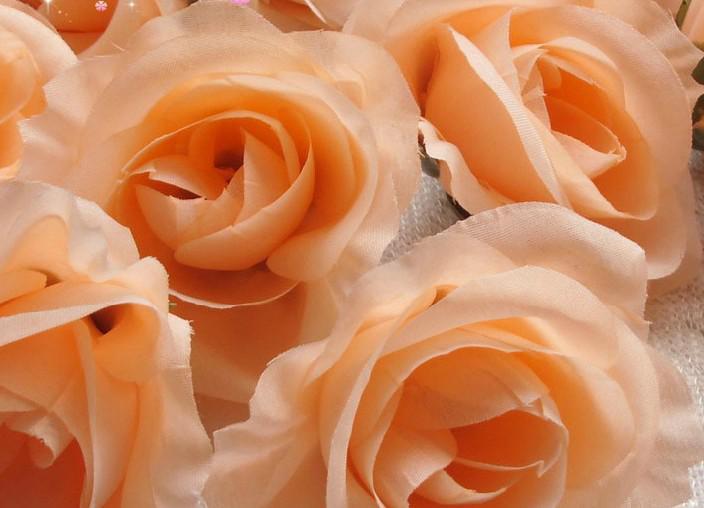 Champagne Couleur Soie Camélia Rose Diamètre 7-8cm Fleurs Artificielles Pivoine Tissu Camélia Têtes De Fleurs pour DIY Bouquet De Mariée