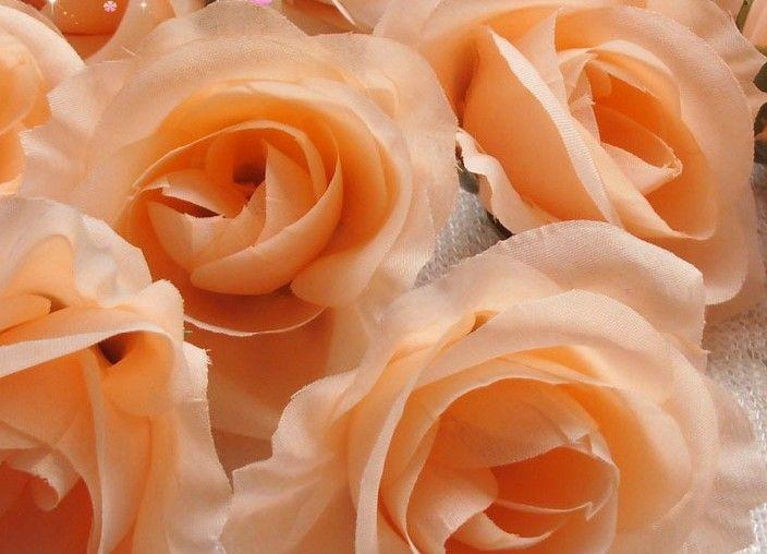 Champagne Couleur Soie Camélia Rose 100pcs Diamètre 7-8cm Fleurs Artificielles Pivoine Tissu Camélia Têtes De Fleurs pour DIY Bouquet De Mariée