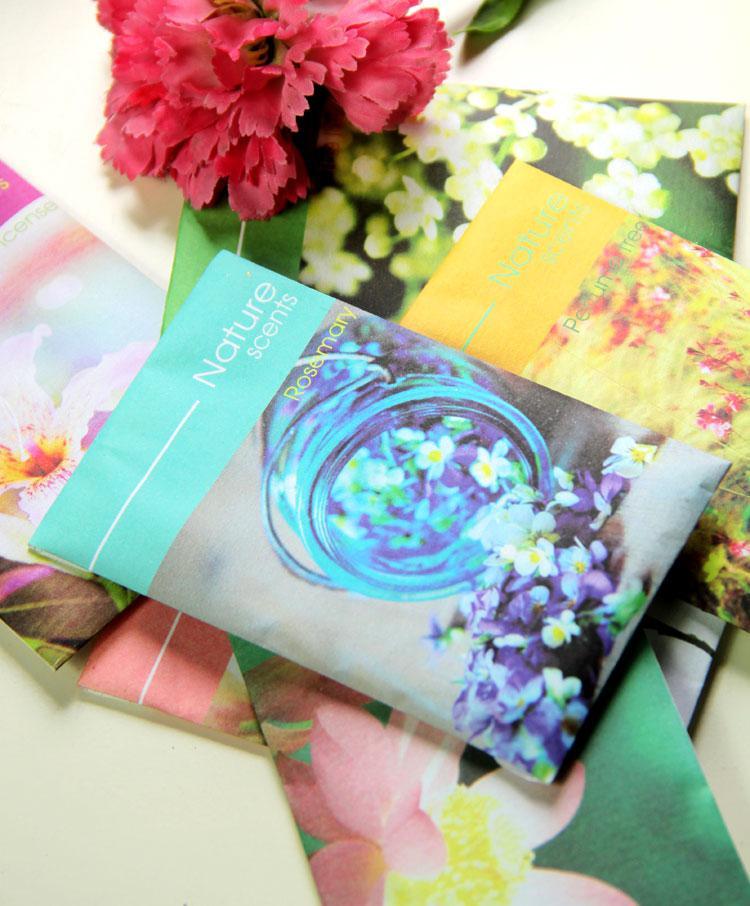 Parfums de parfum de senteurs naturelles multi saveur Aromathérapies Sachets Désodorisant de thérapie de arômes livraison gratuite /