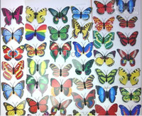 Wholesale Wholesale Butterfly Magnets - 500pcs 7cm Artificial plastics 40 styles Butterfly Fridge magnets home party decoration
