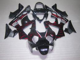 $enCountryForm.capitalKeyWord Canada - High quality Red Flame Fairings kit for Honda CBR900RR 929 CBR CBR929RR CBR929 2000 2001 00 01 motorcycle fairing kits