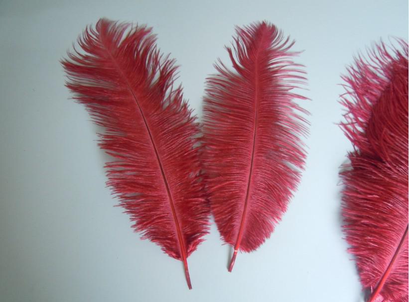 Trasporto libero all'ingrosso 100 pz / lotto 12-14 pollice 30-35 cm borgogna Ostrich Feather centrotavola di nozze decorazione della festa nuziale