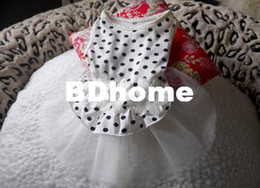 $enCountryForm.capitalKeyWord Canada - CUTE Polka Dot LACE Small Pet Dog Cat puppy Clothes dress size XS S M L-white flower