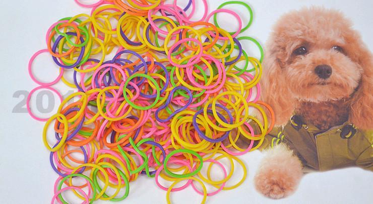 FRETE GRÁTIS !! / 1bag / 1LOT! A beleza colorida do animal de estimação fornece o produto de cabelo do animal de estimação da faixa de borracha da preparação do cão de animal de estimação
