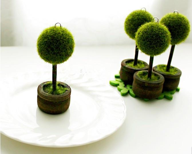 Wedding Favors Green Potted Plants Place Card Holder For Green Theme ...