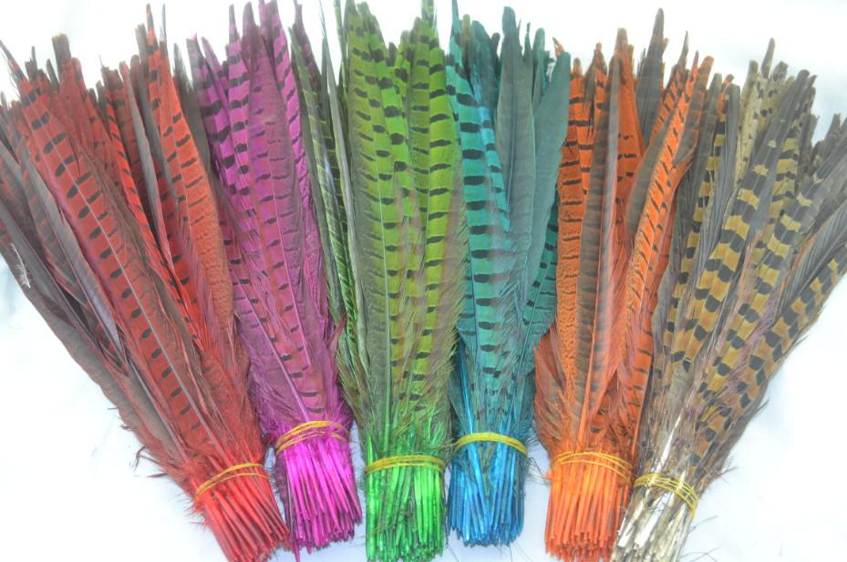 Gratis verzending 100 stks / partij 50-55cm rood oranje heet roze koningsblauw paarse turquoise gele limoen groene ringneck fazant staartveren