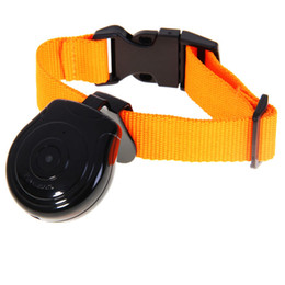 Wholesale Digital Camera Pets Eye - Pet Camera New Pet's Eye View Camera for dogs cats Digital Clip-On Collar Pet Video Camera Cam Pet Supply