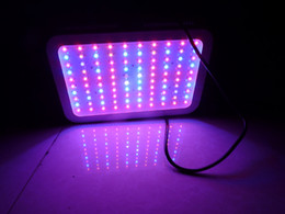 Wholesale Cheap Led Grow Lamps - 9-11 band cheap 300W led grow light high power 100*3w full spectrum hydroponic lamp for lettuce system,indoor veg light,china supplier