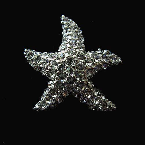 Broche nupcial de plata antiguo Starfish CZ Beach