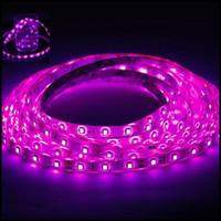 Wholesale Hotel Advertisements - Pink 5050 5M 300 Leds Waterproof Led Strips Light 60Leds M 16.4 Ft 12V Best For KTV Hotel Christmas Light