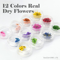 Wholesale Dry Flower For Nail Decoration - New supernova Sale 3d Nail Art Decorations 12 Colors Real Dry Flower Dried Flowers For UV Gel &Acrylic Nail Decoration D102