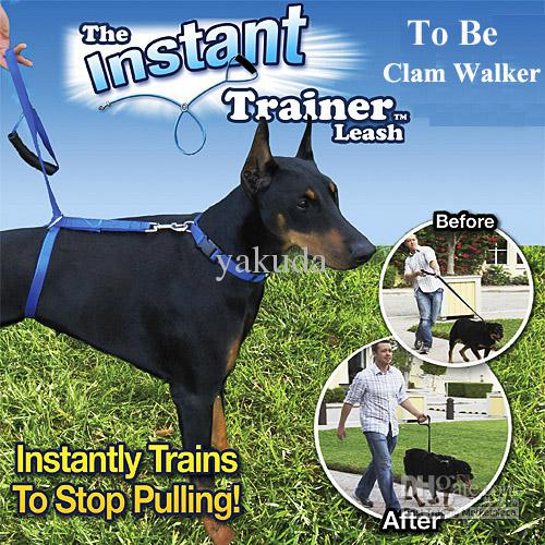 The Trainer Leash Trains To Stop Pulling Fits 30 lbs End Up Dogs Calm Walker