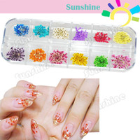 Wholesale Diy Nail Art Flowers - New hot 12 Colors Real Dry Dried Flowers Nail art Decoration DIY Tips Free Shipping 4052