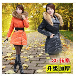 Wholesale Dog Down Coat - TOP quality 2013 Winter Coat Jacket Women's down Long Jacket With 100%Racoon Dog Fur Collar grade platinum 90% Duck Down with hat Y112