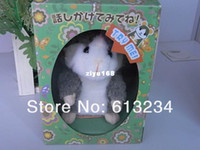 Wholesale Takara Tomy Toy - Wholesale - 10pcs lot Free shipping Takara Tomy Mimicry Pet Hamster Talking Plush Toy Talking Animal -