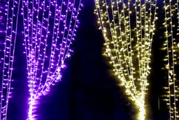 Wholesale Xmas Light Curtains - 6M X 3M, 600 Led Curtain lights String Christmas Xmas wedding White Warm White Blue Yellow Red Pink Purple Molticolor Blue L107