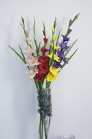 Wholesale Flower Gladiolus - Express Free Shipping! 12pcs PU Latex Gladiolus 102cm Artificial Real Touch Flowers High Simulation Home Decor 5 Color Option #YR-028