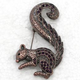 $enCountryForm.capitalKeyWord Canada - Wholesale Crystal Rhinestone Squirrel Brooches Fashion Costume Brooch Pin Jewelry gift C955