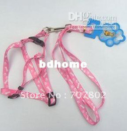 Wholesale Dog Sales Promotion - Wholesale - Promotions!! Hot Sale Fashion Pet Product chain leads traction rope dog chain fit for 0-24kg dog  P