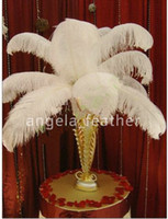 Wholesale Wedding Ostrich Feather Centerpieces - YOUR PICK! 100Pcs lot Natural White Ostrich Feather Plume 14-16inches 35-40cm ,Ostrich Plume for Wedding Centerpieces table Decoration