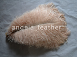 $enCountryForm.capitalKeyWord Canada - Wholesale prices! 100 pcs lot fluffy Champagne Ostrich Plumes, Ostrich feathers for Wedding centerpieces