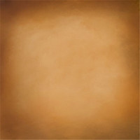 Wholesale Vinyl Seamless Background - Photography New Camera Free Shipping 5x7ft Seamless Background For Photo Studio Computer Printed Muslin Vinyl Backdrop