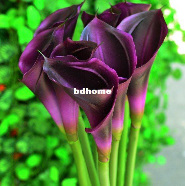 2019 Artificial Real Touch Latex Flowers Dark Purple Calla Lilies
