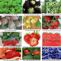 12KINDS DIFFERENT STRABERRY SEEDS (VERT, BLANC, NOIR, ROUGE, BLEU, GÉANT, MINI, BONSAÏ, ROUGE NORMAL, FRAISES DE MEUBLE)