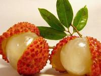 свежие семена деревьев оптовых-Свежий личи Lychy семян личи, Leechee фруктовых деревьев Семена, 10 семян личи, бесплатная доставка